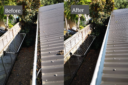 Cleanse Right Ltd Gutter Clean in Glendowie
