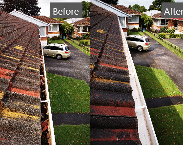 Cleanse Right Ltd Gutter Clean in Epsom