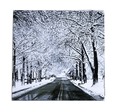 Winter Roads - Coaster(s)