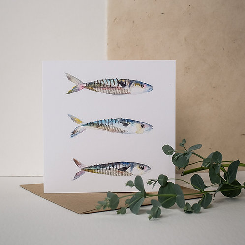 Three Mackerel Card