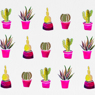 Cactus-Pattern_edited.jpg