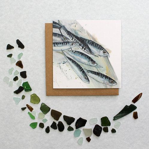 Splashy Mackerel Card