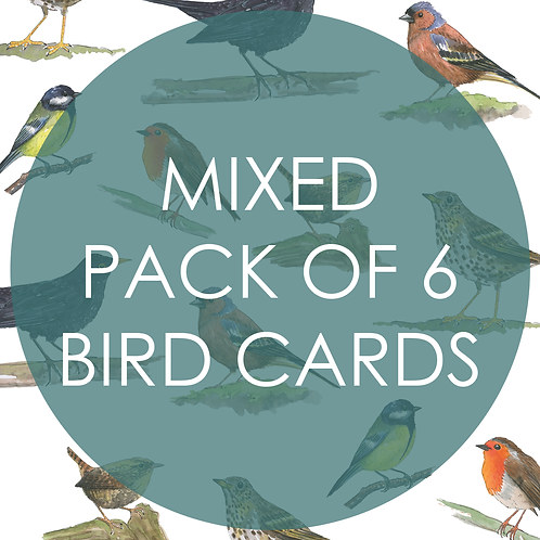 Mixed Pack of 6 Bird Cards