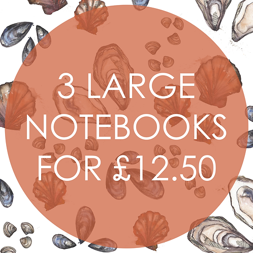3 Large Notebooks for £12.50