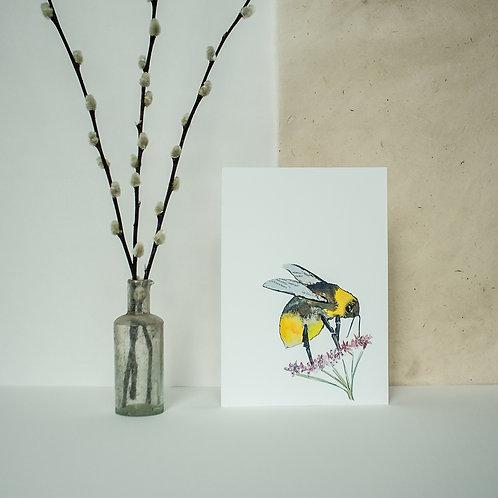 A5 Bee Print