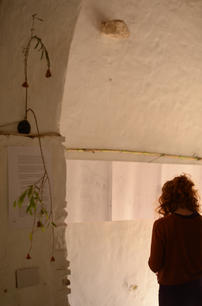 bee-time-final-exhibition-sarah-dowling-