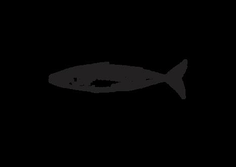 Mackerel Black.png
