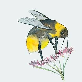 Bee-time-cover-tile-sarah-dowling.png