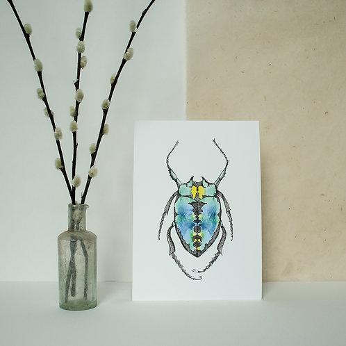 A5 Blue Beetle Print