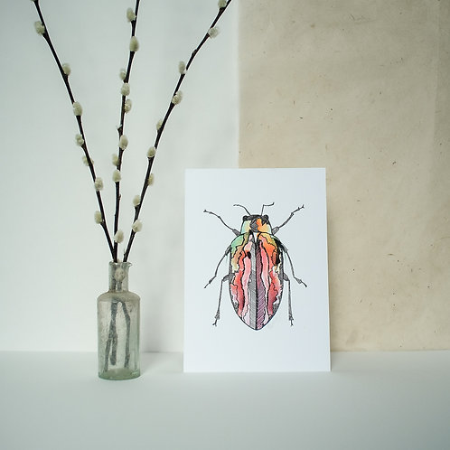 A5 Red Beetle Print