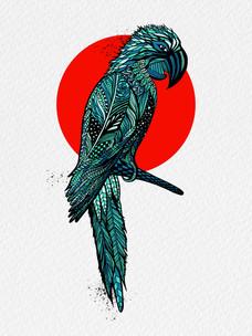Parrot-1.jpg