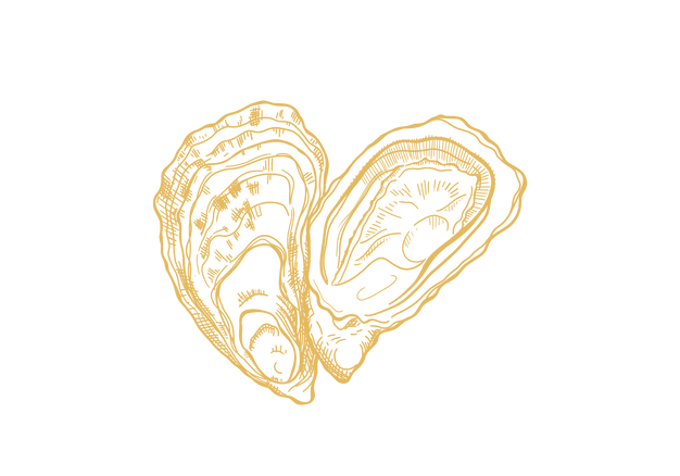 oyster-digital-line-drawing-sarah-dowlin