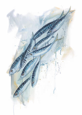splashy-mackerel-painting-sarah-dowling-