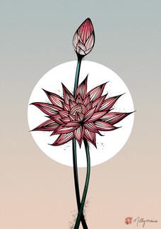 Japanese Lotus Flower Art Print