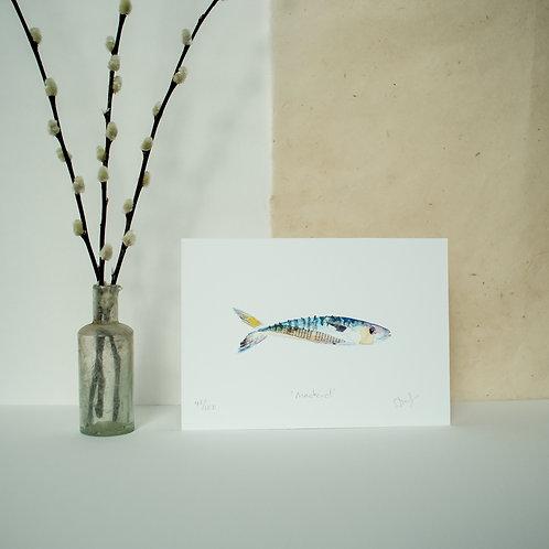 Little Mackerel Print