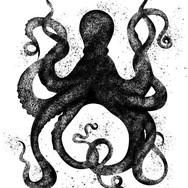 Octopus-Black_edited.jpg