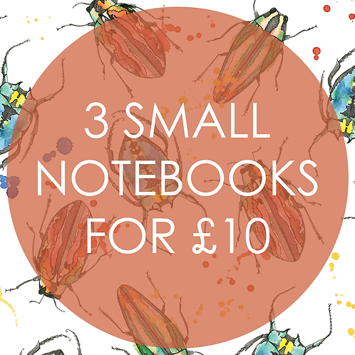 3 Small Notebooks for £10