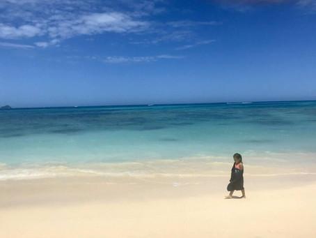 自然があまりにも美しすぎて ~ハワイ~
