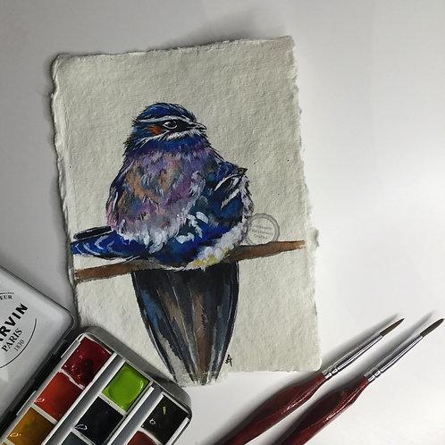 Ptaszek XVII