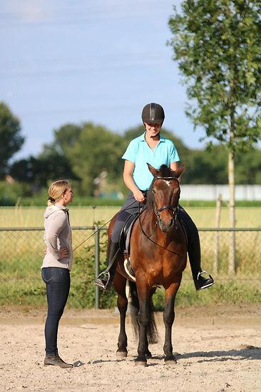 Dressuurles voor paard en ruiter