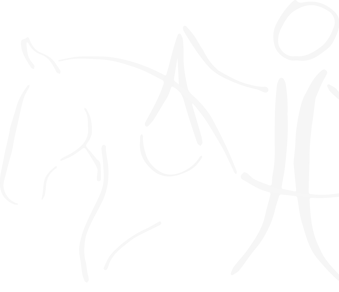 Balanced Equitation, klassieke dressuur, zitles, fysiotherapie, paardenosteopathie