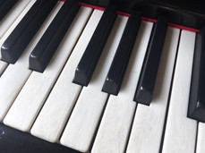 Faux Ivory Keytop Detail