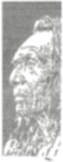 Pocahontas 8 FINAL smalll.jpg
