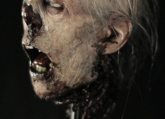 SILICONE CADAVER HEAD DISPLAY
