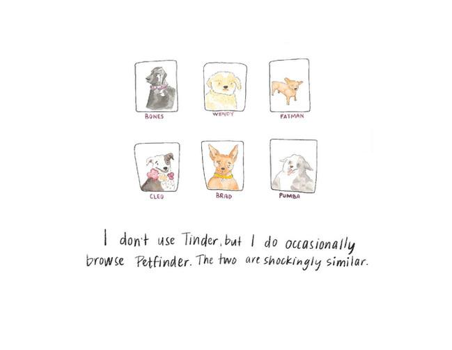 PetFinder Tinder Watercolor Illustration
