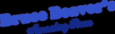 Bruce Beaver logo-01.png