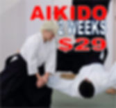 AIKIDO FOR 29.jpg
