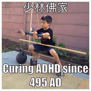 KUNG FU VS ADHD.tiff