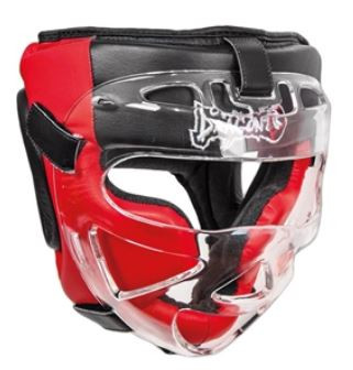 Dragon Do adjustable head protector with faceshield $90.JPG