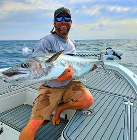 huge kingfish