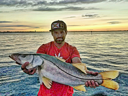 Snook fishing sebastian inlet