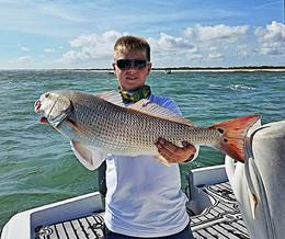redfish caught on sebastian fishing charter
