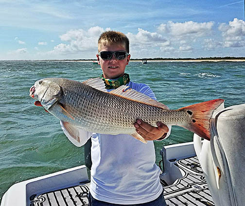 redfish caught on sebastian fishing charter