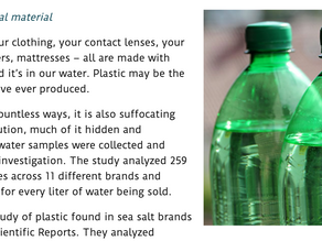 HOW TO DETOX FROM PLASTICS AND OTHER ENDOCRINE DISRUPTORS