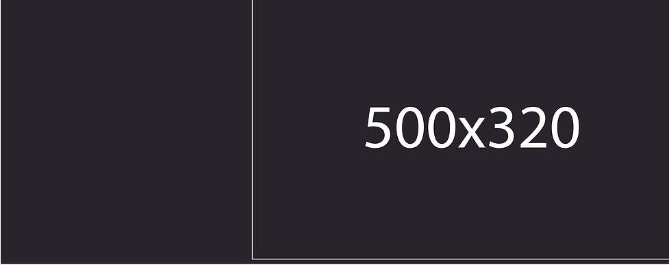 320.jpg