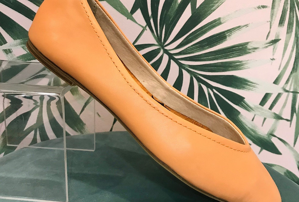Orange Ballet Shoe