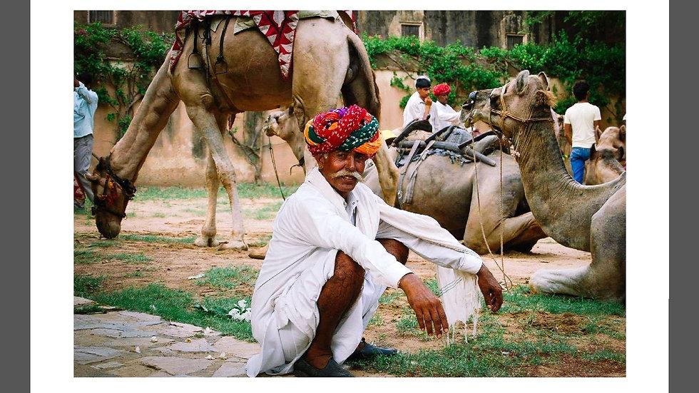 A camel owner takes a break, Uttar Pradesh