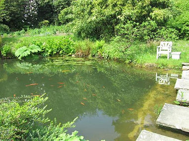 Chartwell Fish Pond