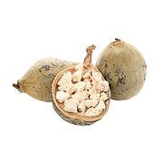 Baobab Fruit.jpg