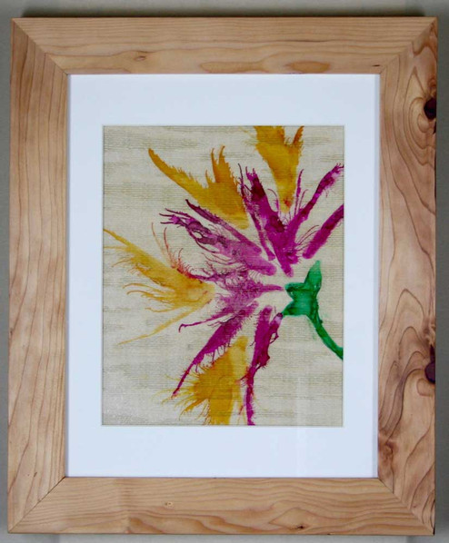 Spider Iris