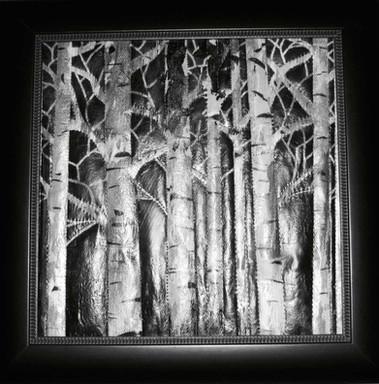Midnight Birch