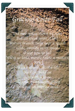 Gracious Color Fall