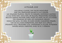 A Pillar Lily
