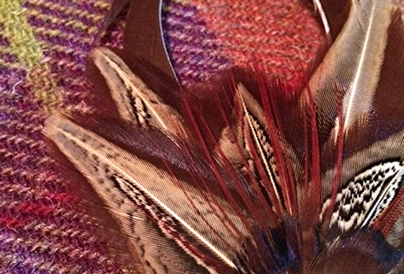 The 'Lucy' Pheasant Feather Pin
