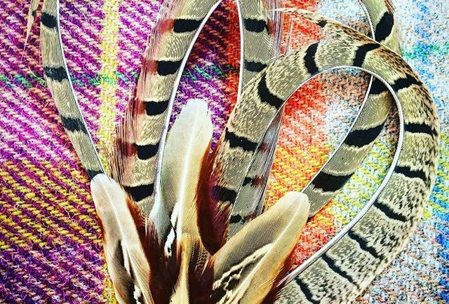 The 'Elizabeth' Pheasant Feather Pin