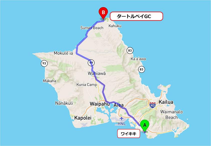 map_golfl_turtle.jpg